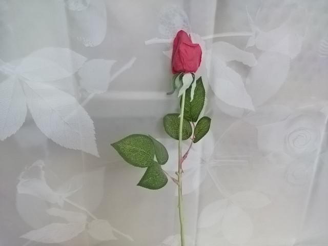 Роза в бутоне, 48 см.