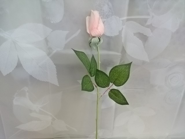 Роза белая в бутоне, 48 см.