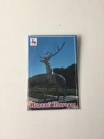 """Магнит """"Нижний Новгород"""" виниловый, 6 х 8 см."""