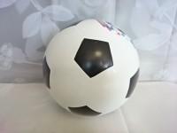 """Мяч футбольный """"РОССИЯ"""", 200 мм, ПВХ."""