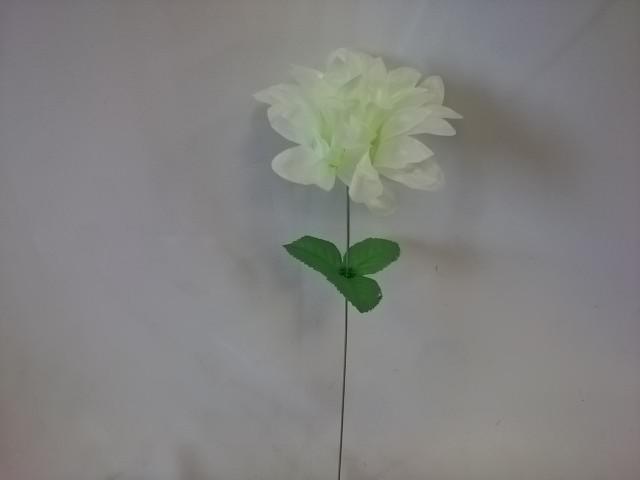 Хризантема белая,  ВЫПИСЫВАТЬ КРАТНО 20 ШТУКАМ.