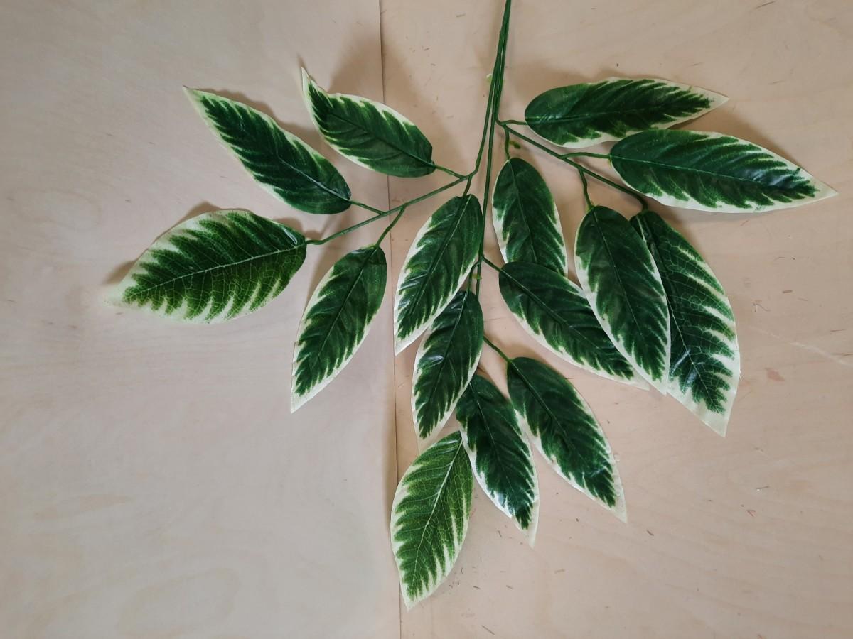 Ветка манго с крупными листьями, 68 см, цвет - зелёный с белой кромкой.