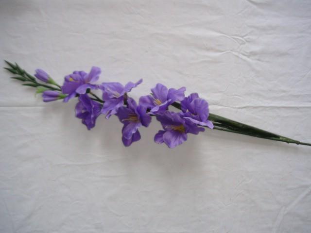 Гладиолус 79 см., фиолетовый
