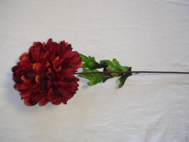 Хризантема 70 см., D=15 см., бордовая
